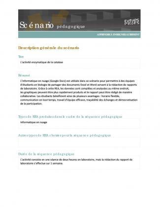 Document : L'activité enzymatique de la catalase